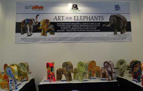Wildlife SOS at the India Art Fair