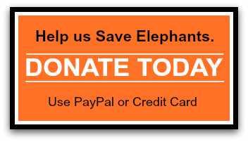 DonationButtonElephantsGeneral