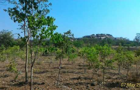 Ramdurga Valley in the Summers