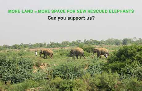Lend a Hand, To Buy More Land