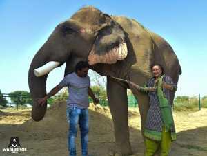 Sanjay's rope