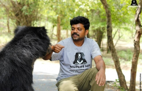 Meet Prakash, Our Caring Bear Keeper!