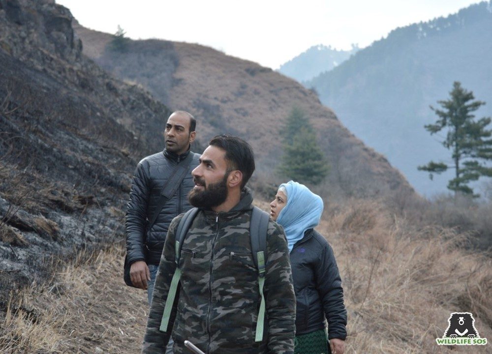 Being a local Kashmiri, Shabir knows the length and breadth and each corner of the Dachigam National Park!