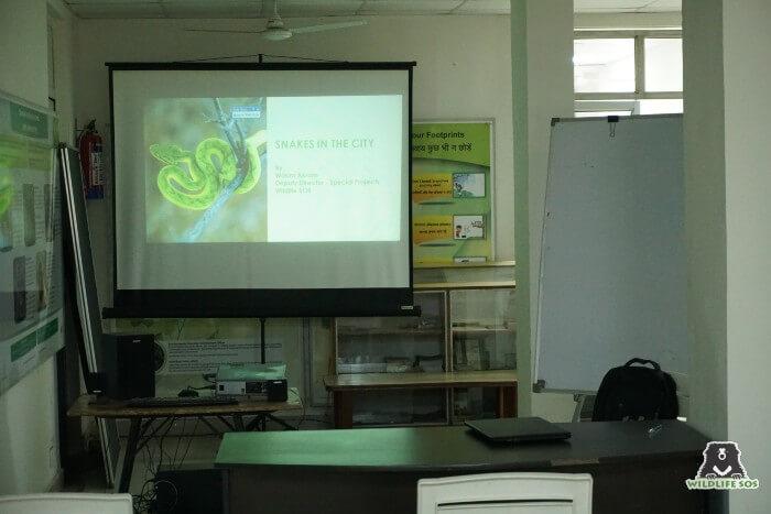 Wildlife SOS organised a detailed presentation on snake identification for aspiring candidates.