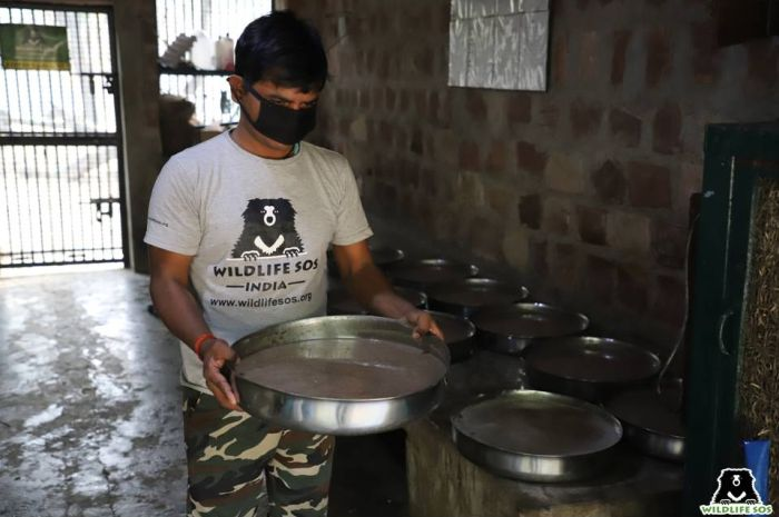 Ranjan's keeper pouring out sumptuous quantities of porridge with a dollop of honey - just the way Ranjan likes!