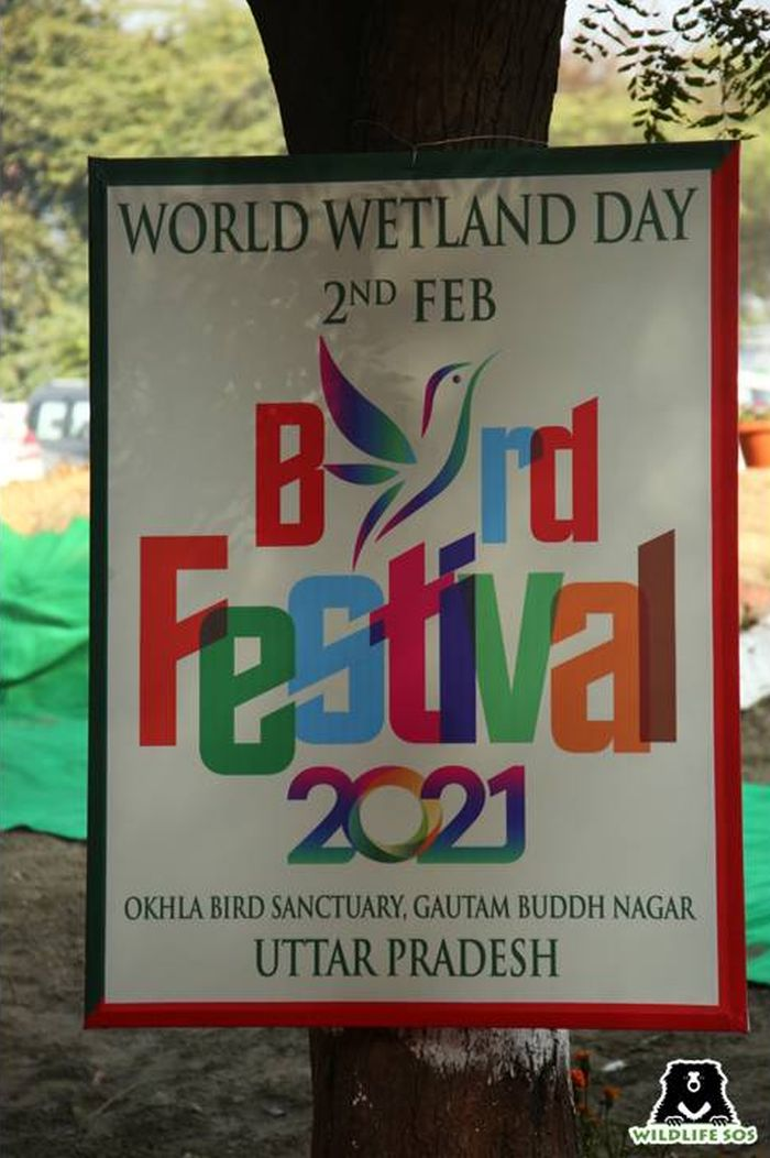 The World Wetland Day was celebrated by organising a Bird Festival at the Okhla Bird Sanctuary.