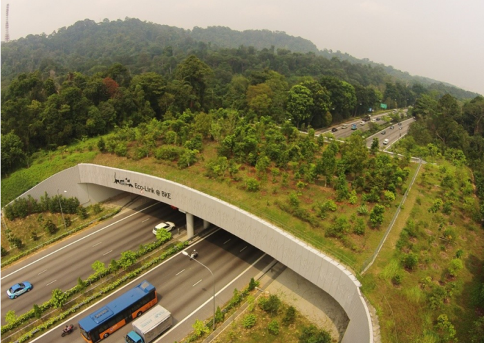 The Eco-Bridge at Singapore has significantly contributed to reduced roadkills.