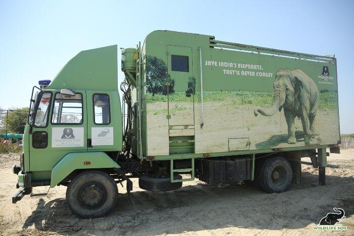 Presenting India's first Elephant Ambulance!