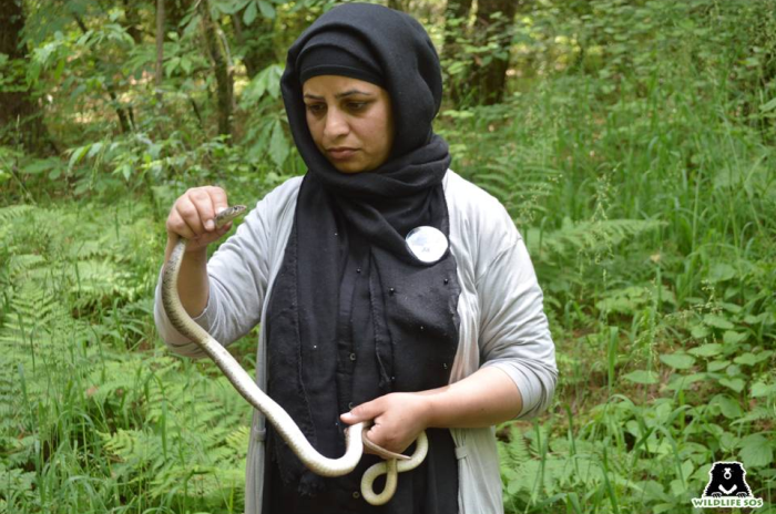 Aaliya Mirconsiders her work with reptiles extremely important because of the lack of awareness surrounding them.