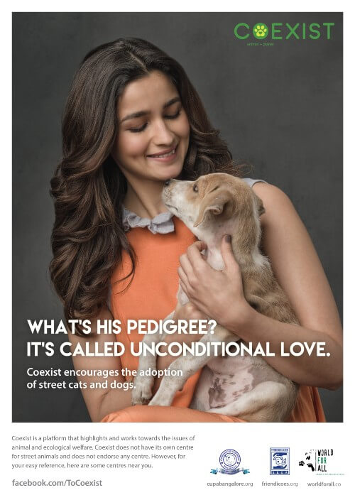 Alia's charity, Coexist, works with animal issues and welfare.
