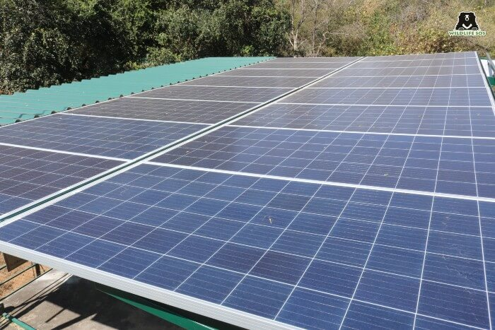 Solar panels at BBRC which power the entire Centre.