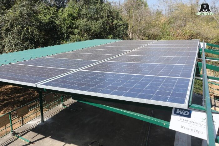 Solar power is a highly efficient source of energy.