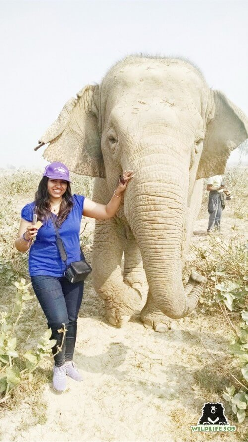 Suvidha misses all the elephants at the Centre but misses Laxmi the most!