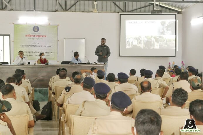 Wildlife SOS Team Member speaks on wildlife veterinarians.