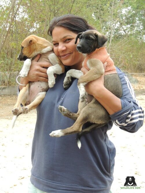 Rakhee also loves taking care of the stray dogs, cats and cows around her locality