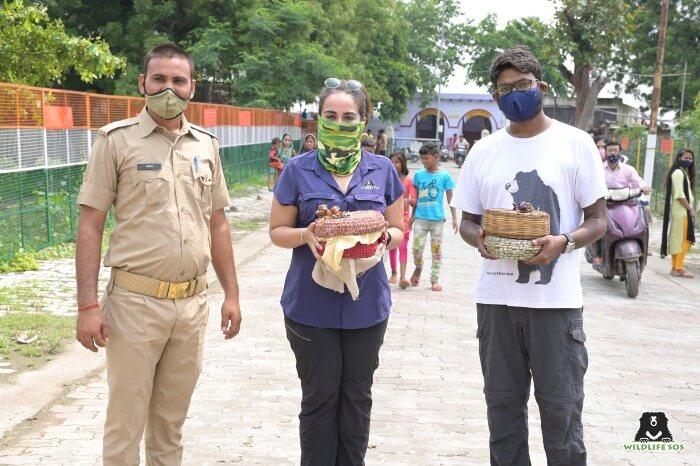 Petje af voor ons toegewijde reddingsteam en het Uttar Pradesh Forest Department voor het redden van de slangen